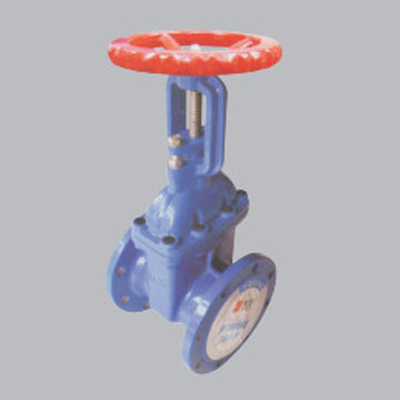 Flanged-Risisng-Stem-Resilient-seated-Gate-Valve-amd1